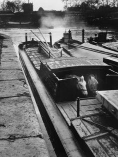 Quai de l'Arsenal Paris 1970- 11) LE PALAIS DE L'ARSENAL: Partant de la tour Bardeau de l'enceinte de Philippe Auguste qui s'élevait au bord de la Seine, à l'emplacement du n°32, quai des Célestins, le nouveau rempart longeait la rivière et, se dirigeant vers l'est, venait aboutir à la tour de Billy pour repartir en angle aigu vers le N.O en longeant les fossés qu'a remplacé de nos jours le bassin de l'Arsenal.