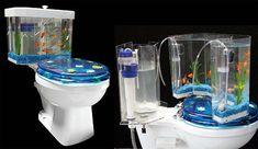 toilet bowl aquarium