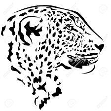Resultado de imagen para ANIMALES en blanco y negro