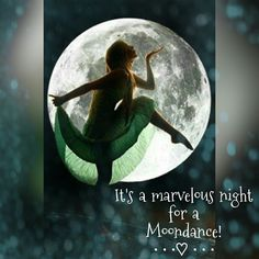 It's a marvelous night for a Moondance! ༺♡༻