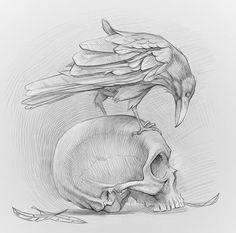 All About Art Tattoo Studio Rangiora. Crow Art, Raven Art, Bird Art, Dark Art Drawings, Tattoo Drawings, Drawing Sketches, Shirt Drawing, Kunst Tattoos, Skull Tattoos