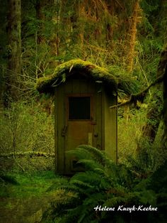 Washington Outhouse