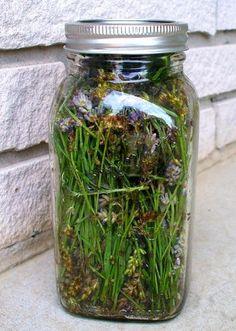 How to Make Lavender Essential Oil | DIY Cozy Home