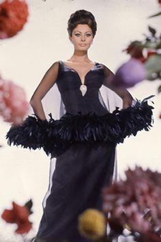 Sophia Loren - Arabesque