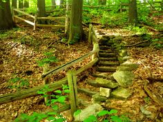 A staircase in Jacobus Park, in Wauwatosa, Wisconsin, USA.