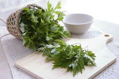 Mugwort is beneficial to our health and is known to treat a variety of health issues including period problems. Read more on benefits of mugwort. Hyssop Essential Oil, Essential Oils For Hair, Oil Benefits, Health Benefits, Natural Cures, Natural Health, Wormwood Plant, Parasite Cleanse, Medicinal Plants