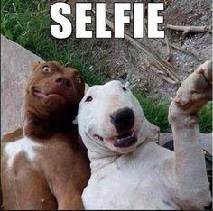 #dogselfie