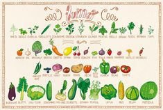 Voici le calendrier des fruits & légumes de Juillet