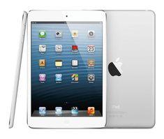 iPad Mini with Retina Display Coming Soon