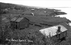 Fra Jule i Sørli 1920 Avbildet sted: Lierne Sørli Fotografering1920 Fotograf:Alstad, Amund