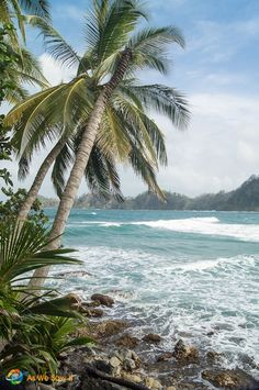 Just off the north coast of Panama in the Caribbean is Isla Grande - www.aswesawit.com