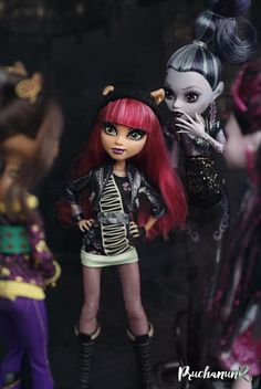 All Monster High Dolls, Monster High Makeup, Monster High Crafts, Monster High Art, Monster High Characters, Love Monster, Monster Dolls, Howleen Wolf, Monster High Pictures