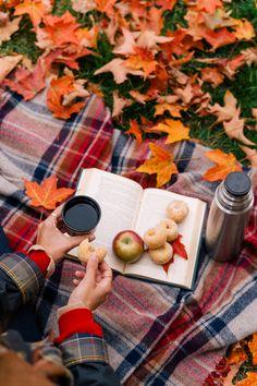 Una escapada de otoño a Kennebunkport y Cape Porpoise, Maine - Gal Meets Glam -