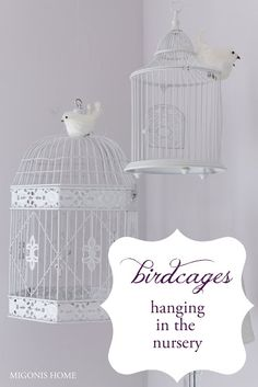 hang birdcages to add some 3D interest in a room
