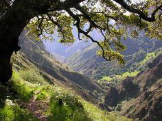 Subiendo al pico Vigueras desde San Esteban, Cantabria, Spain.