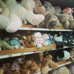 Reunión de #peluches en la juguetería jeje #pelucheando