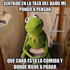 Sentado y pensando en el baño. #humor #risa #graciosas #chistosas #divertidas