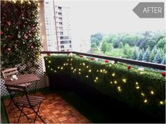 DIY Box shrub with lights to spruce up a small balcony