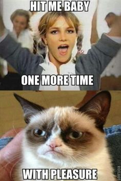 Grumpy Cat. Hit me baby one more time. With pleasure. (Britney Spears)