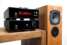 Bilderesultat for rega audio system