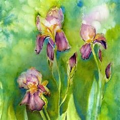 Image result for Watercolor Flowers Iris