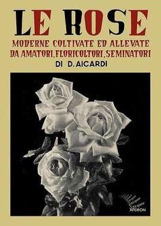 Prezzi e Sconti: Le #rose moderne coltivate ed allevate da  ad Euro 16.92 in #Libro #Libro