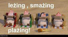 lezing plazing