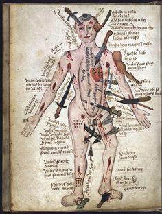 Anatomical illustrations from an English medical treatise dating from the mid 15th century, including a Wound Man illustration, depicting a man who has been stabbed, bitten, and wounded by arrows, as well as bludgeoned in the arm and head.