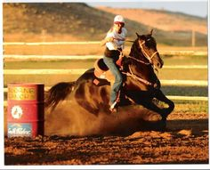 Barrel Racing Wannabes's Photo Horses, horse, pony, equine, horse photos, horse pictures