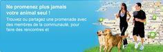 1er site de rencontre pour animaux (français) ! chien, chat, chevaux... - http://www.pets-dating.com/#
