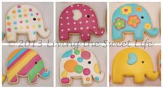 Elephant cookies, those are so cute i wouldn't want to eat them