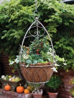 Shop For Cheap Multiflora Bracketplant Wall Hanging Ivy Artificial Rose Artificial Flower Rattan Hangings For Wedding Home Decoration 7 Colors Making Things Convenient For Customers Home & Garden