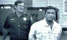 Louis Ferrante in 1993. Lou Ferrante (born May 13, 1969) is a former Gambino family mobster who, after spending eight years in prison,[1] successfully appealed his conviction and became a bestselling true crime, business, and science writer.