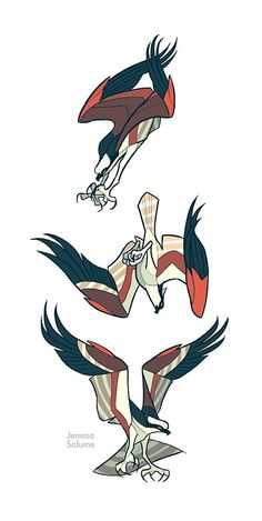 Studies - Osprey by *oxboxer on deviantART: