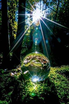 Science Discover crystal ball in the forest Macro Photography Creative Photography Amazing Photography Globe Photography Beautiful World Beautiful Places Beautiful Forest Cool Photos Beautiful Pictures