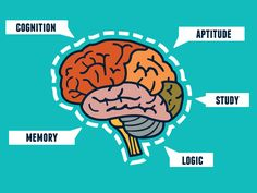 Capabilities of the human brain. Mindmap and infocharts - vector illustration , Learning Ability, Brain Tricks, Study Materials, Copywriting, Learning Resources, Self Development, How To Relieve Stress, Content Marketing, Business Marketing