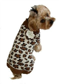 Leopard Sweater for Dogs