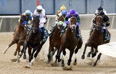 Magnum Moon, with jockey Luis Saez (purple cap) up, leads the Arkansas Derby on April at Oaklawn Park in Hot Springs, Ark. Derby Recipe, Run For The Roses, Churchill Downs, Derby Party, Kentucky Derby, Arkansas, Horses, Running, Park