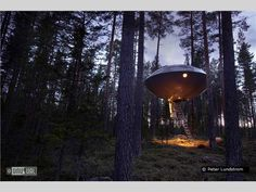 One of many crazy rooms at the TreeHotel in Harads, Sweden
