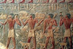 Relief from Tomb of Ti: This low relief scene of everyday life comes from the tomb of Ti at Saqqarah. It was carved between 2494-2345 BCE. (Photo Credit: The Frederic Soltan/Sygma/Corbis)