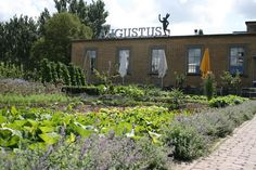 Villa Augustus in Dordrecht
