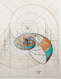 math geometric art | Art Meets Mathematics: Dizzying Geometric GIFs by David Whyte by ...