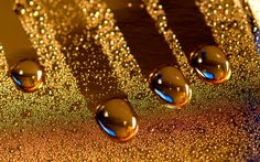 Amazing Water Drops.... by Partha Ghosh on 500px
