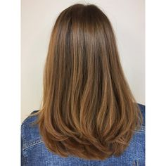 Medium Hair Cuts, Long Hair Cuts, Medium Hair Styles, Short Hair Styles, Haircuts For Long Hair With Layers, Long Layered Hair, Hair Goals Color, Honey Balayage, Langer Bob