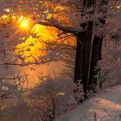 """ Winter Sunset, photo via Sondra "" Winter Szenen, Winter Sunset, All Nature, Amazing Nature, Beautiful Sunset, Beautiful World, Foto Picture, Snow Scenes, Winter Beauty"