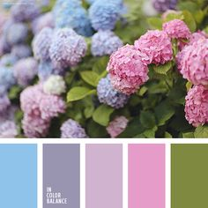 Wedding colors inspiration Color combination, color pallets, color palettes, color scheme, color inspiration. Sonya Khegay