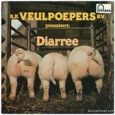 The World's Greatest LP Album Covers, too Worst Album Covers, Music Album Covers, Music Albums, Lp Cover, Vinyl Cover, Cover Art, Bad Album, Piece Of Music, Weird And Wonderful