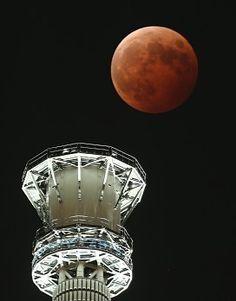 LED光に照らされたスカイツリーと間近で赤銅色に輝く皆既状態の月食=東京都台東区で8日午後8時1分、武市公孝撮影(600ミリレンズ使用)