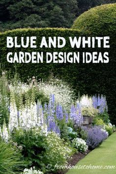 house flower garden 471259548507784034 - These blue and white garden design ideas are gorgeous! I really love the blue and white ginger jars used as garden decor in the yard. This is one of my favorite flower garden color schemes! Blue Plants, White Plants, White Flowering Plants, Design Jardin, Garden Design, Landscape Design, White Gardens, Modern Gardens, Small Gardens