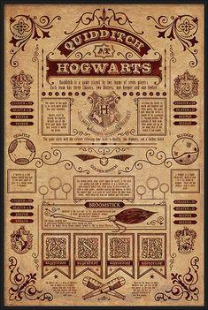 Harry Potter - Quidditch At Hogwarts Poster, Affiche   Acheter-le sur Europosters.fr